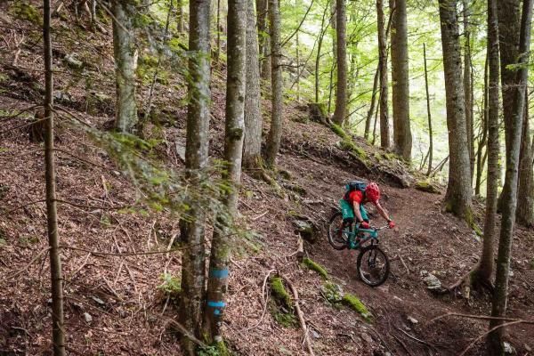 Ribs Trail