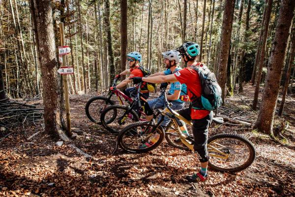 Ude's Trail